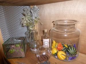 Recipientes de cristal para flores y plantas